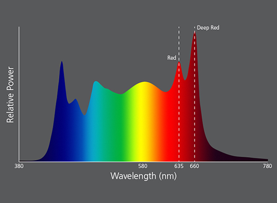 The addition of Deep Red adds access to a whole new part of the visible light spectrum on Source Four LED Series 3